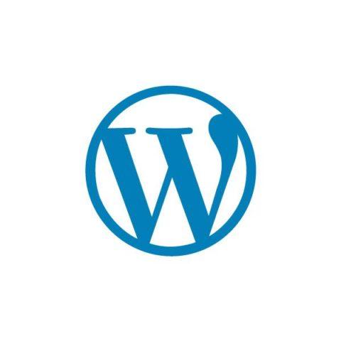 tecnologie-cms-ecommerce-wordpress